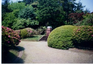 旧モーガン邸 庭